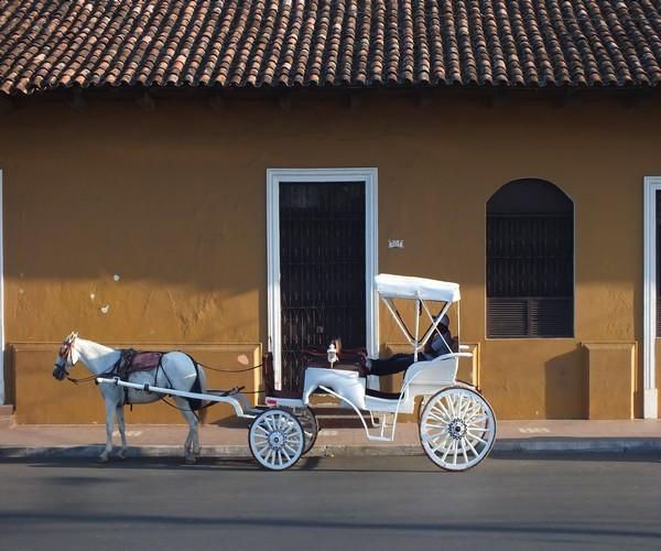 Promenade en calèche dans la magnifique ville de Granada (Photo Gwenael Cavellec)