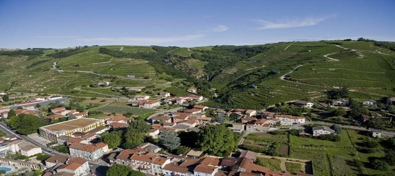 Vue d'ensemble sur les vignobles du célèbre Côte-Rôtie (Photo Domaine de Gilles Barge)