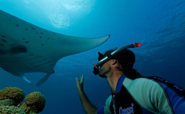 Mayotte, le paradis des plongeurs. @ CDT Mayotte