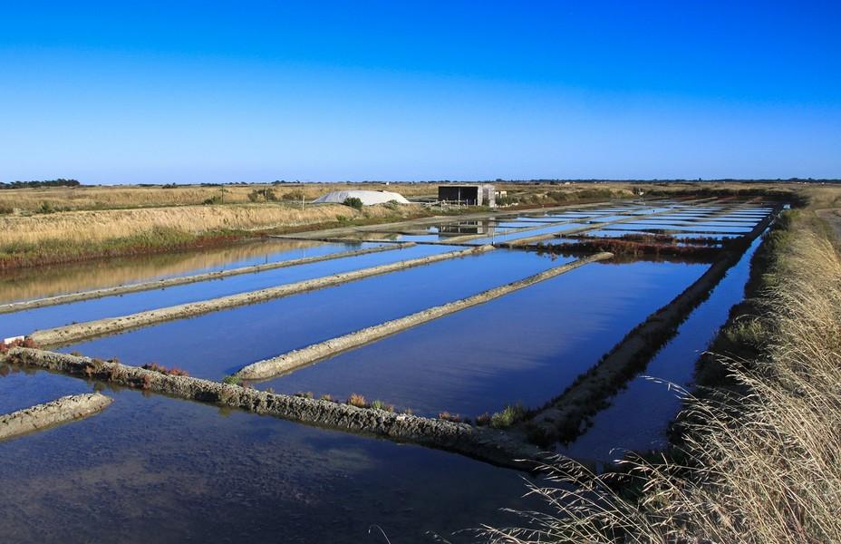 Superbe vue sur les marais salants de Noirmoutier. @ Pixabay/Lindigomag