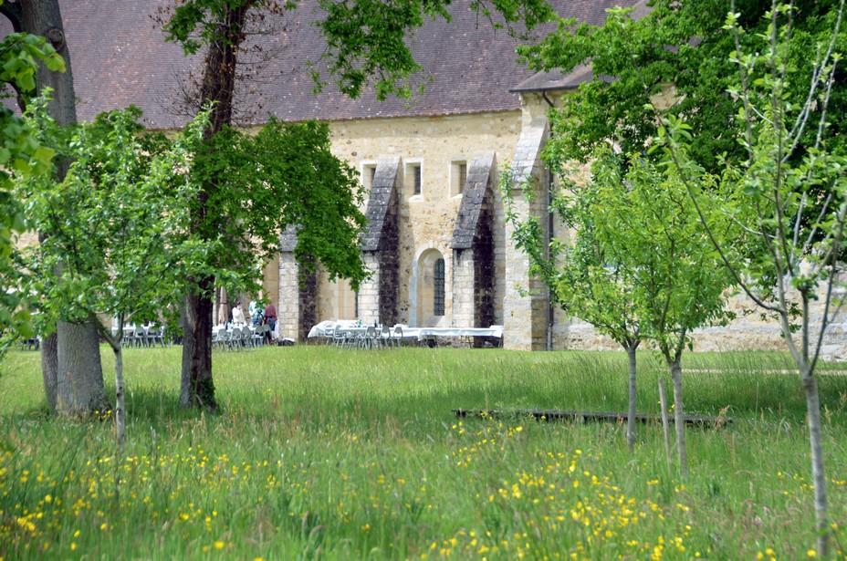 L'Abbaye dispose également d'un verger conservatoire, avec des pommes anciennes cultivées en partenariat avec les « Croqueurs de pommes » de la Sarthe @ David Raynal