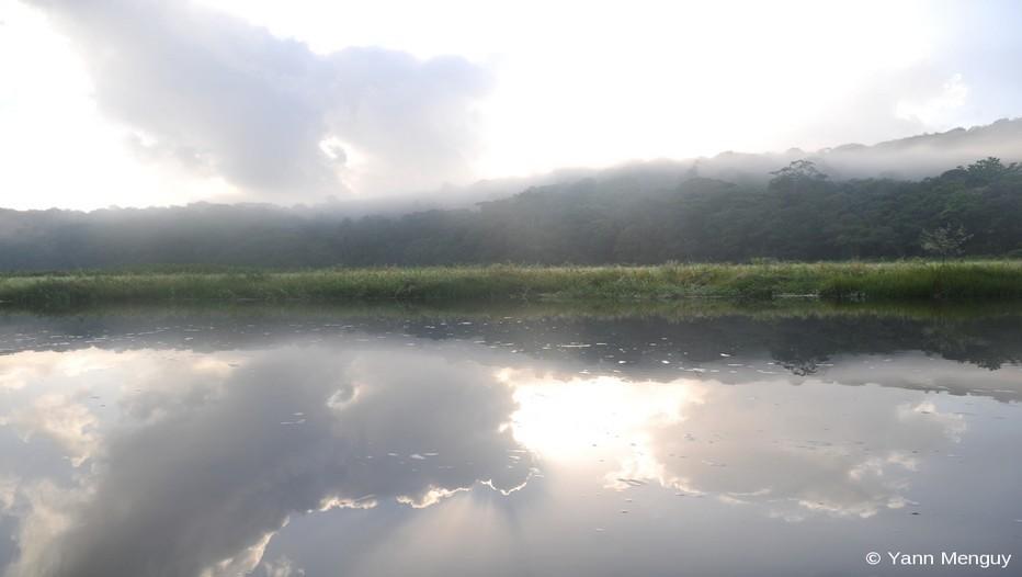 Vue étonnante de beauté sur la réserve naturelle des marais de Kaw-Roura  en Guyane (Photo Yann Menguy).