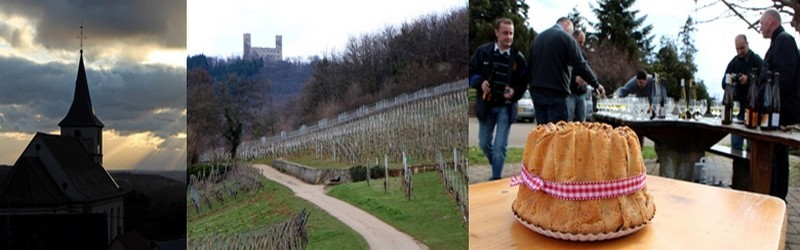 Ottrott est un joli village du piémont vosgien, réputé pour ses châteaux, son monastère du Mont Ste Odile, son fameux rouge d'Ottrott et pour son hôtellerie florissante. (Crédit photo David Raynal)