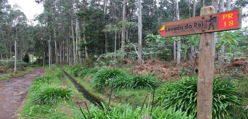 De nombreux chemins de randonneurs suivent le tracé des levadas.(Crédit photo André Degon)