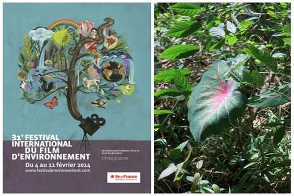 L'île de La Réunion à Paris au Festival international du film d'environnement