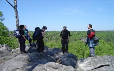 Promeneurs en forêt de Fontainebleau (Crédit Photo DR)