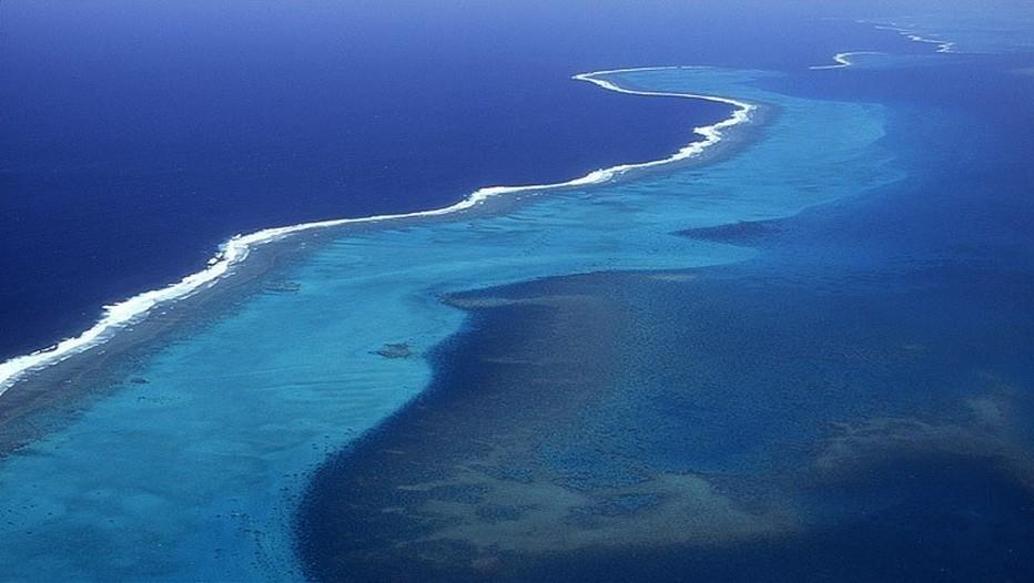 La Grande Barrière de corail est le plus grand récif corallien du monde1,2 comptant plus de 2 900 récifs et 900 îles s'étirant de Bundaberg à la pointe du Cap York soit plus de 2 600 kilomètres sur une superficie de 344 400 km². Le récif se situe en Mer de Corail au large du Queensland, en Australie.(Crédit photo DR)