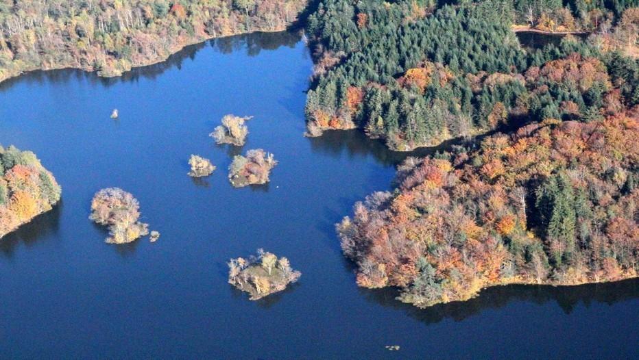 Toutes les saisons ont leur charme pour visiter le Plateau des Mille étangs, mais l'automne est certainement la plus belle.(Crédit photo André Degon)