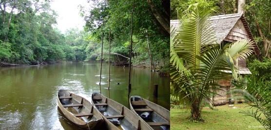 Côté loisirs, des guides spécialisés vous amènent en balade dans la forêt amazonienne, à pied ou en pirogue, à la rencontre d'une faune et d'une flore préservées et exceptionnelles (Crédit photos DR et Yann Menguy)