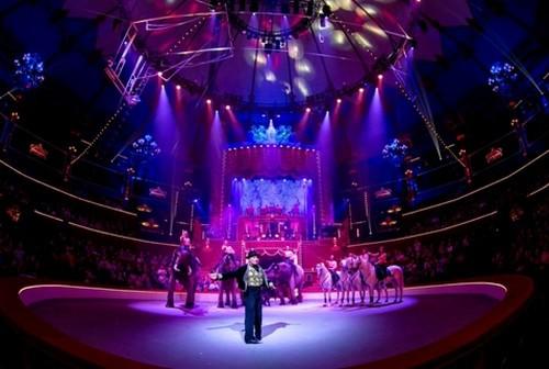 """Avec des places allant de 10 à 40 euros, le cirque reste l'un des spectacles tous publics le moins cher.(Crédit photo Cirque Bouglione Spectacle """" Géant """" - Dominique Secher 2014)"""