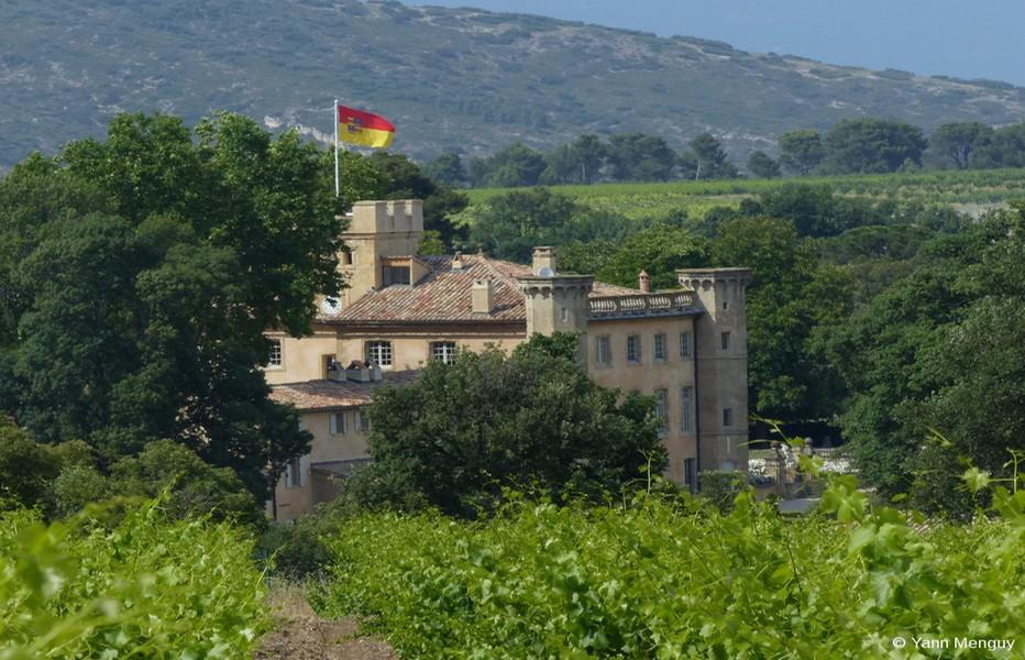 La « Villa Baulieu », une demeure d'hôtes d'exception au coeur de la Provence. (Crédit photo Yann Menguy)