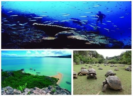 L'île de Rodrigues une destination qu'il faut découvrir  pour ses traditions,  ses paysages sous-marins, une nature encore préservée, et bien sûr sa gastronomie. (Crédit photos DR)