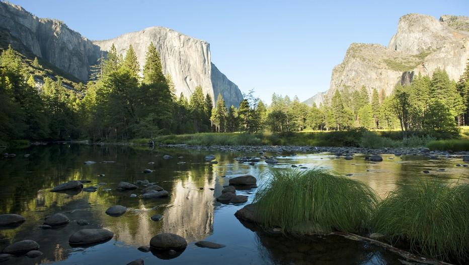 A Yosemite, sur chaque rive, El Capitan et Half Dome dressent leur verticalité, 900 mètres au sommet pour le premier, régulièrement attaquée en varappe par les grimpeurs les plus audacieux.  © DR