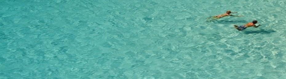 Se rincer à l'eau claire après l'exposition et le bain  © DR