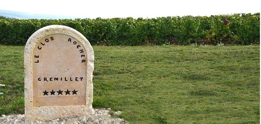 le Clos Rocher, une vigne d'exception d'1,4 ha planté en pinot noir, le cépage emblématique de cette maison. Gremillet. Un Clos qui descend en pente douce mais constante vers la Vallée des Riceys, la plus grande commune viticole de Champagne. © DR
