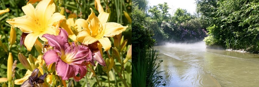 C'est une réelle  réussite environnementale car une fois à l'intérieur du parc, on oublie totalement l'extérieur.. © Richard Bayon