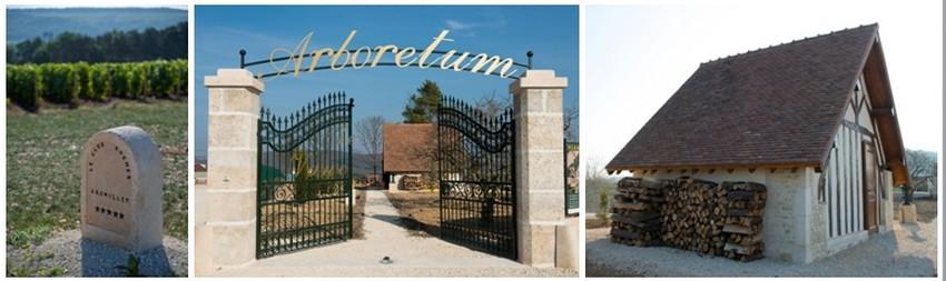 Contigu à son Clos Rocher, Jean-Michel en bon père bâtisseur a eu l'idée originale de créer un arboretum  © David Raynal