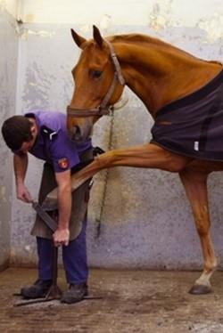 Dans la forge limage des sabots des chevaux de la Garde Républicaine. © Garde Républicaine