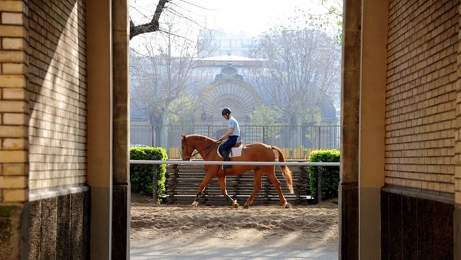 L'allure fière du cavalier de la Garde Républicaine et de son cheval lors d'un entraînement. © Garde Républicaine.