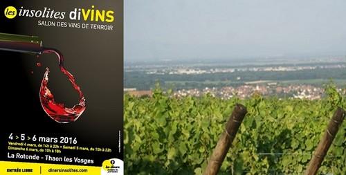 Affiche des insolites divins à Thaon-les-Vosges près d'Épinal. ©Dîners Insolites ; Courir dans les vignobles vosgiens © courirdanslesvosges.Blogspot.fr