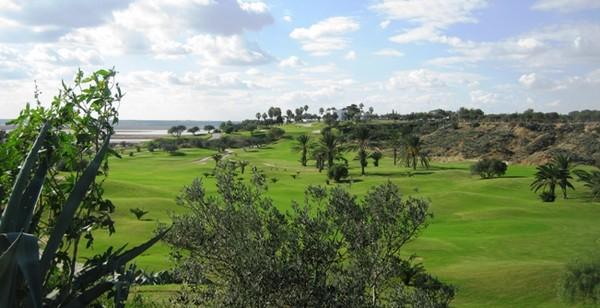 Le parcours de Monastir est installé autour d'une oliveraie centenaire.© OT Tunisie