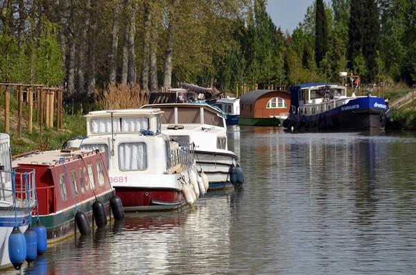 De nombreuses pénichettes sont amarrées en attendant de reprendre la navigation sur le Canal du Midi (Hérault)  © David Raynal
