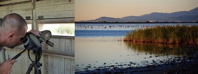 Dans ce vaste étang préservé du Languedoc-Roussillon,  on y vient observer plus de 246 espèces d'oiseaux dont 200 migrateurs. © Catherine Gary et OT Canet-en-Roussillon