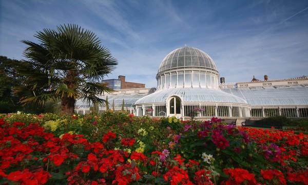 La serre de palmiers des jardins botaniques de Belfast :  en verre et fer forgé, est un site emblématique de la ville. ©ireland.com