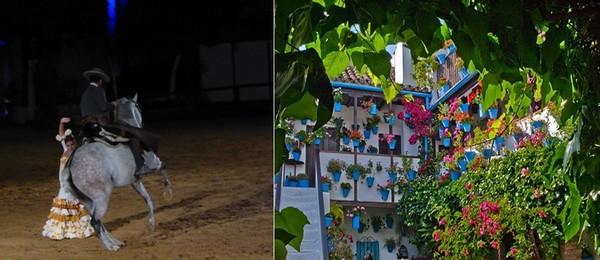 Une des figures du spectacle de chevaux andalous; Le patio magnifiquement coloré de l'Hôtel Cordoba****  © C.Gary