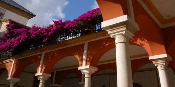 Au-dessus des colonnades un amoncellement de fleurs.  © Lindigomag/Pixabay.com