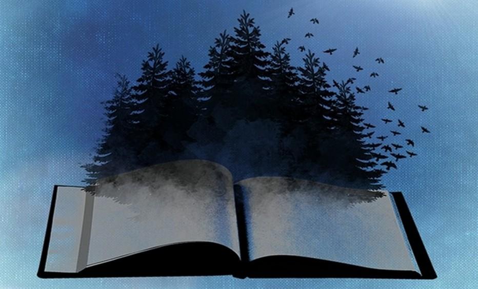 Des Beaux-Livres à offrir.... même à Noël !  Copyright Lindigomag/Pixabay