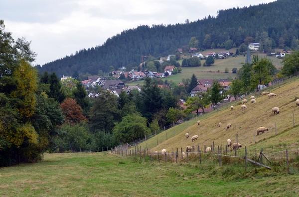 Baiersbronn situé dans la province du Bade-Wurtemberg, entre Strasbourg et Stuttgart, un endroit idéal pour se ressourcer.© David Raynal