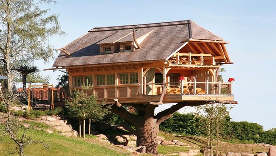 A l'hôtel Tanne, le sauna du chalet dans les arbres peut accueillir jusqu'à 30 personnes.© David Raynal