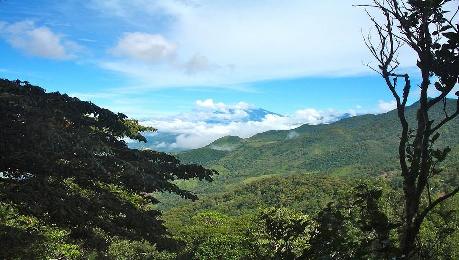 Entre jungle et volcans, le Panama possède l'une des natures les plus riches de la planète. © Lindigomag/Pixabay