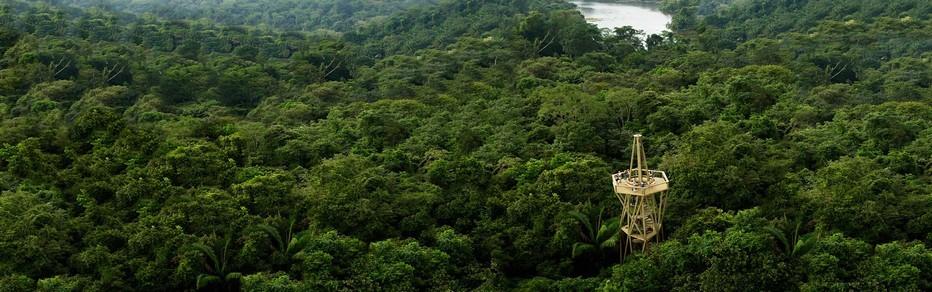 Le Parc national de Soberania est le rendez-vous incontesté des passionnées de la biosphère © Visitpanama
