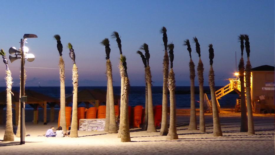 Le soir à Tel Aviv on s'attarde le long de la mer. (Copyright C.Gary)