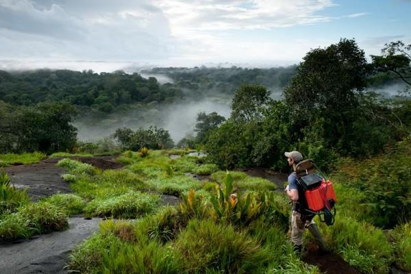 La France et l'Union européenne prennent très au sérieux l'énorme responsabilité qu'ils ont pour assurer la préservation de cet  de forêt amazonienne  © G.FeuilletPAG