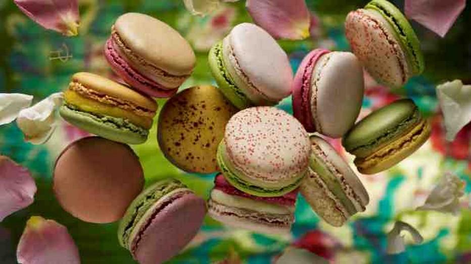 Tout le talent et la créativité de Pierre Hermé pour ses macarons... Copyright P.H.