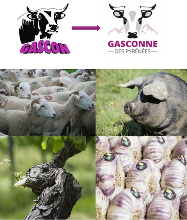Depuis le 23 février et jusqu'au dimanche 3 mars, la Haute-Garonne est présente au Salon International de l'Agriculture, Porte de Versailles à Paris, pour présenter sur son stand les six filières d'excellence de son terroir.  @ DR