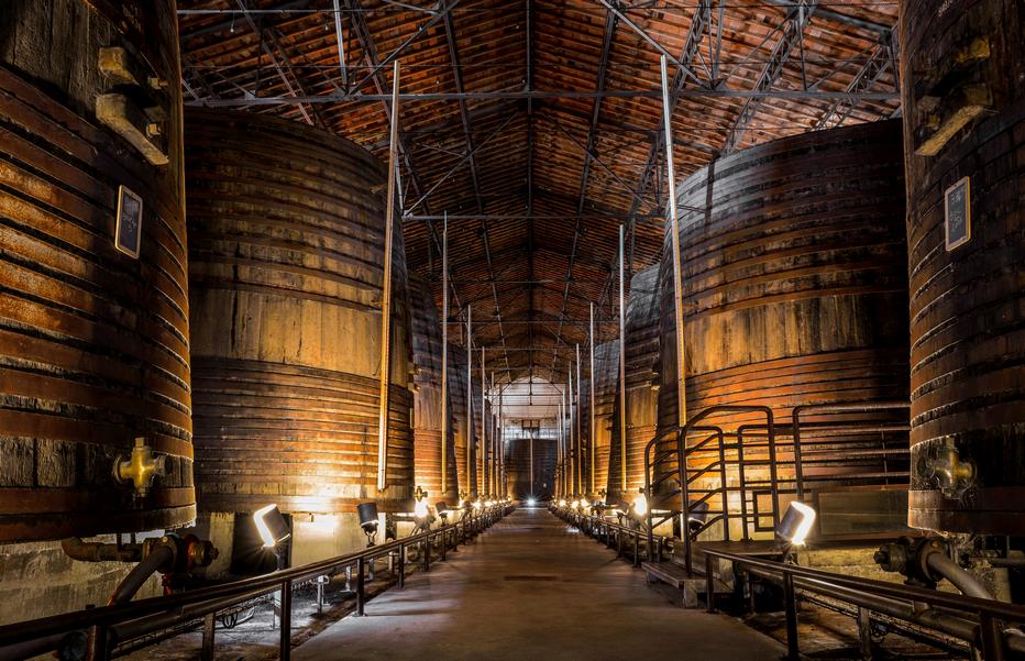 Grande-Cave. Terres des Templiers 750 vignerons exploitant 1250 hectares de vignes, ce qui représente l'équivalent de 75% de la production du Cru. @photo Damien Malejacq