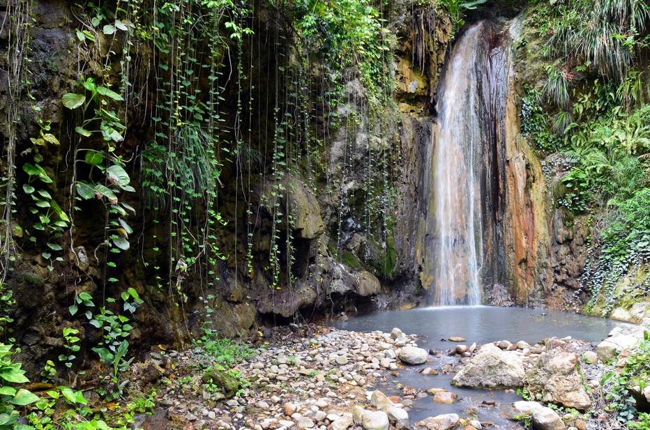 Les cascades d'eaux sulfureuses au cœur des jardins botaniques de Diamond Falls @ David Raynal