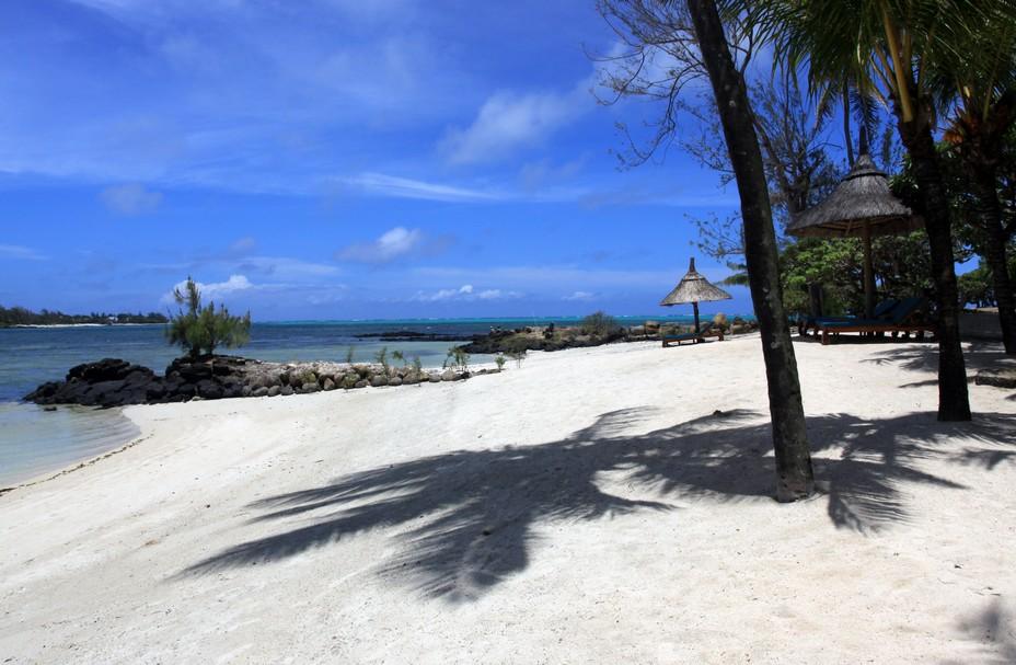 La plage de l'hôtel Constance Prince Maurice*****. De par sa riche biodiversité tropicale, la grande forêt de mangrove indigène (Rhizophora Mucronata) et la réserve de poissons protégée du barachois, la faune et la flore qui entourent l'hôtel Constance Prince Maurice sont uniques à Maurice. @ David Raynal