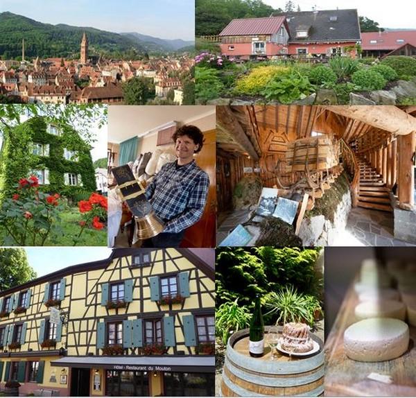En haut de gauche à droite : Vue sur la ville Munster (Alsace) -@ DR - Ferme auberge Christlesgut @ C.Gary, de gauche à droite : Maison d'Albert Schweitzer @ C.Gary, Jean Claude Mann Sellier-Bourelier @ C.Gary, Musée de la Schlitte @ Office de Tourisme de la Vallée de Munster – Quentin Gachon . De gauche à droite :  L'Hôtel du Mouton à Riquewhir @ C.Gary, et Dégustation durant la Parenthèse authentique @ C.Gary