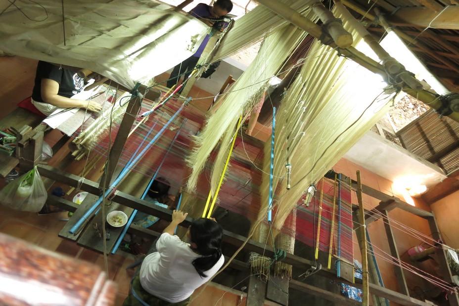 Quatre tisseuses sur le métier pour la fabrication du  brocart  au Centre de sériciculture de la Reine Sirikit @ C.Gary
