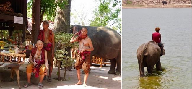 Chamans au village des éléphants de Ban Ta Klang. et  l'heure du bain dans les eaux du Mékong  @ C.G.