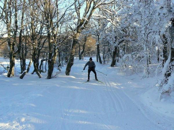 Le ski de fond à la cote @ André Degon