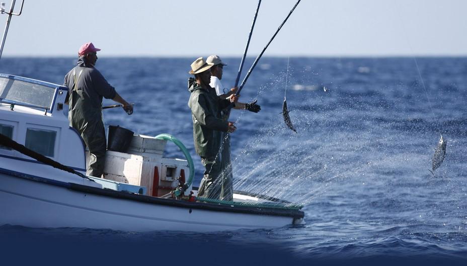 Pêcheurs de thon à la canne. Pêche responsable et raisonnée. @ Fish4Ever