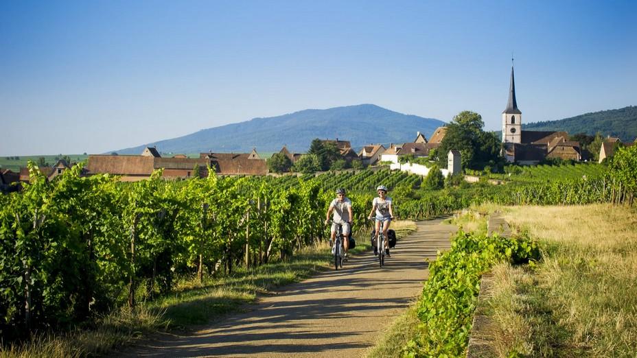 La route des vins en Alsace @  La route des vins