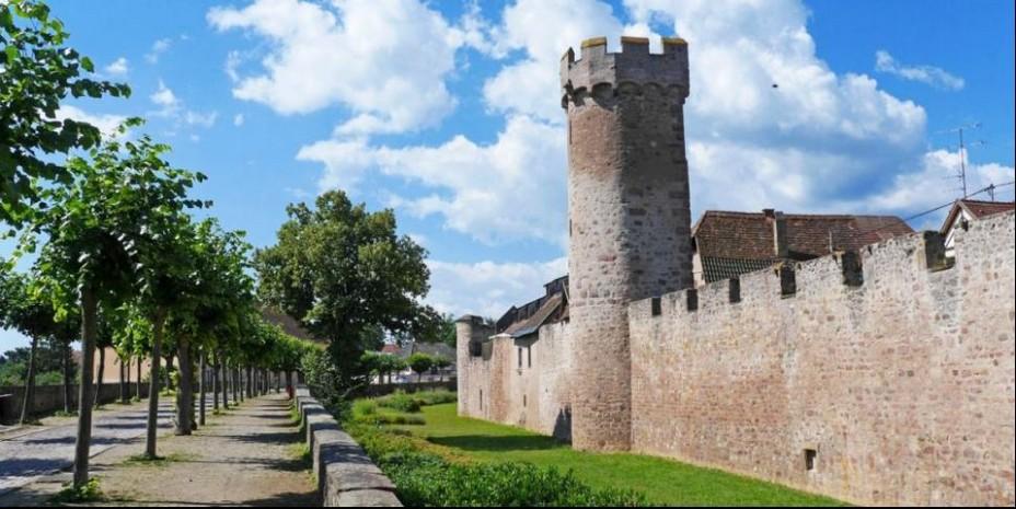 Faire aussi le tour des remparts, monter au mémorial des « incorporés de force » d'où la vue est stupéfiante @ OT Obernai