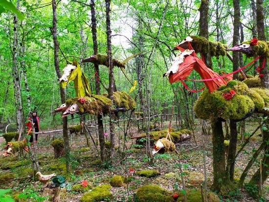 La Forêt des Géants Verts @C.Gary
